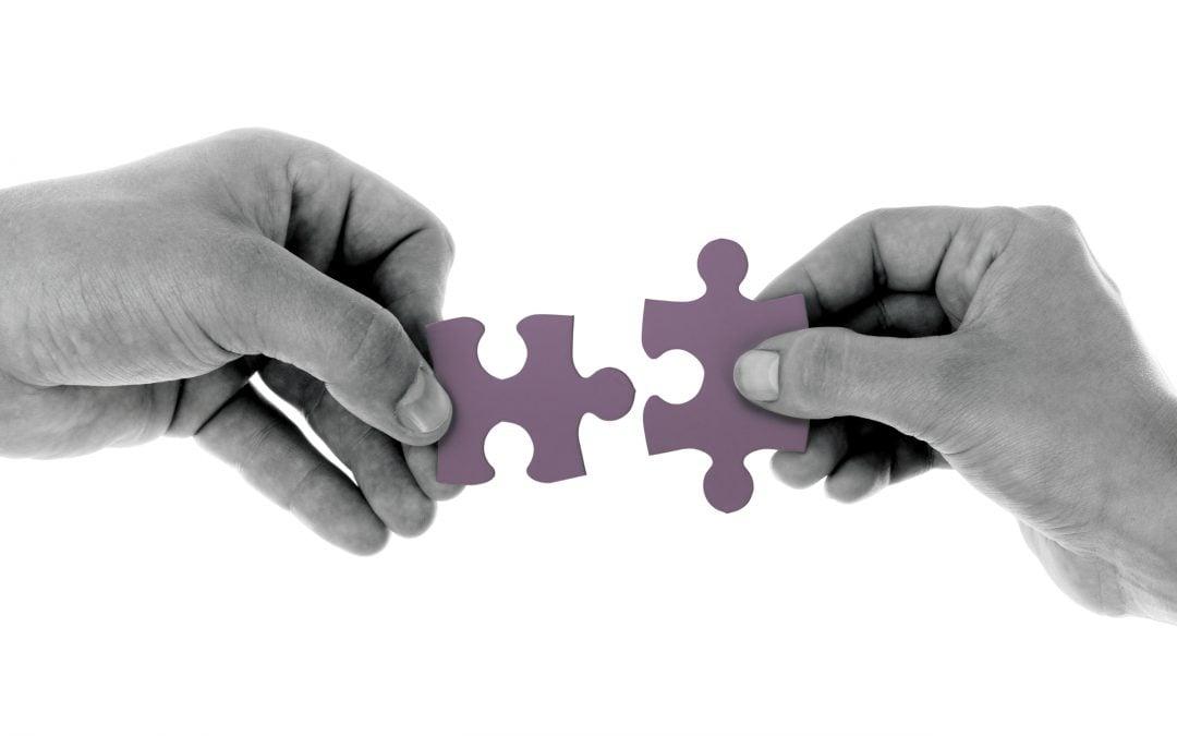 SRS Partner Program